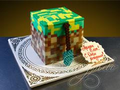 "���� ""Minecraft"""